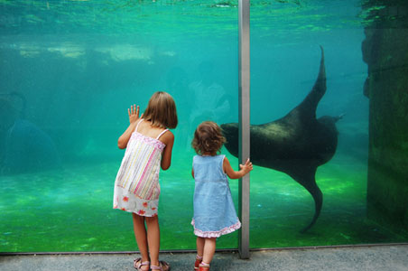 11 Things to Do With Kids in Vienna