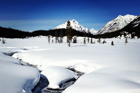 Just Back From: The Canadian Rockies