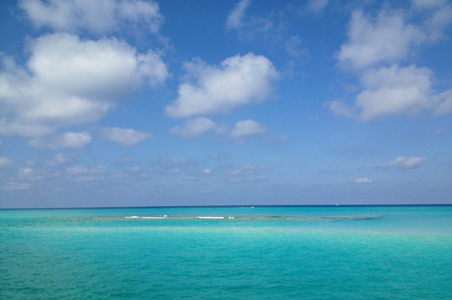 10 Reasons to Go to Bimini