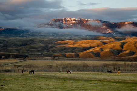 6 Reasons to Visit Cody, Wyoming