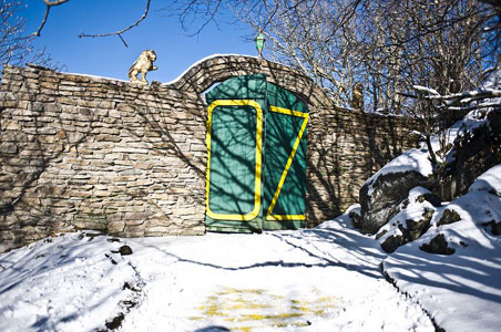 Abandoned Land of Oz Theme Park Reopens for Two Days