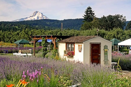 Foodie Day Trips from Portland, Oregon