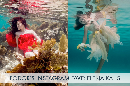 Follow Favorite: Elena Kalis