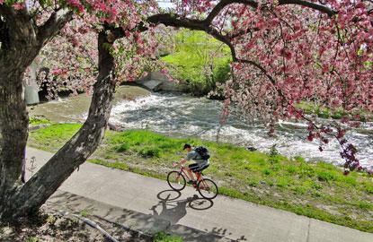 8-denver-biking.jpg