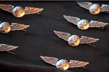 AA-wings.jpg