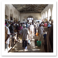 Alexis-Just-Back-Tanzania-Stone-Town-Fish-Market.jpg