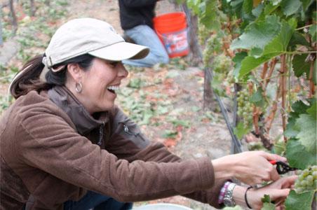 Bacara-Crush-Harvest-Wine-Expereince.jpg