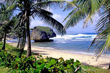 Bathsheba-barbados.jpg