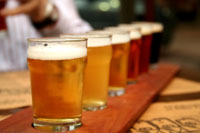 Beer-sampler-tray-varieties.jpg