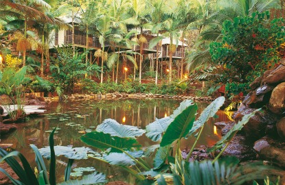 Best-Spas-Daintree-Eco-Lodge.jpg