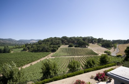 Sodaro Estate Vineyards