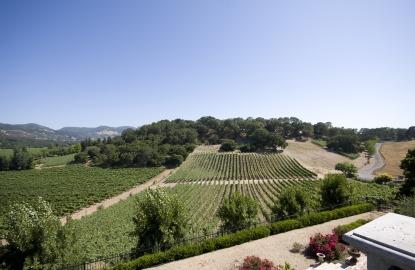 California-Wine-Country-Sodaro-Estate.jpg