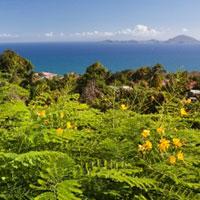 Caribbean-quiz-guadeloupe-m.jpg