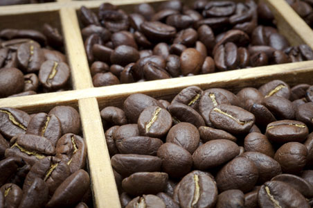 Coffee-in-Costa-Rica.jpg