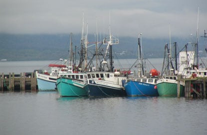 Digby-Fishing-Boats.jpg