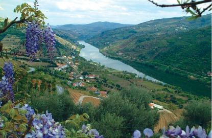 Douro-River-Cruising.jpg