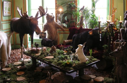 France-Paris-Taxidermy-Deyrolle.jpg