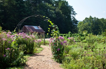 Hotel-Gardens-Blackberry-Farm.jpg