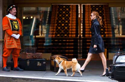 Kimpton-woman-walking-dog.jpg