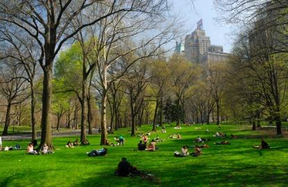 New-York-City-Central-Park.jpg