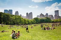 New-York-CityCentral-Park-Great-Lawn-Picnic.jpg