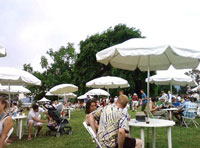 North-American-Organic-Brewers-Festival-tables.jpg