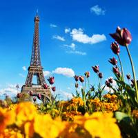 Paris-Eiffel-tower-flowers-spring.jpg