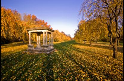Philadelphia-foliage-tgiving.jpg
