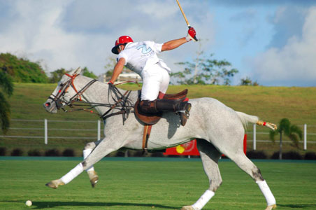 Polo-Player-barbados.jpg