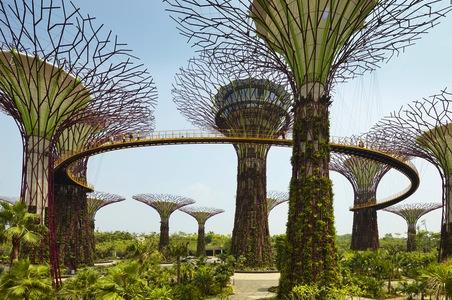 Singapore-supertrees.jpg