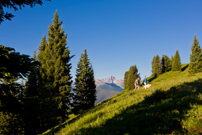 Vail-summer-hiking.jpg