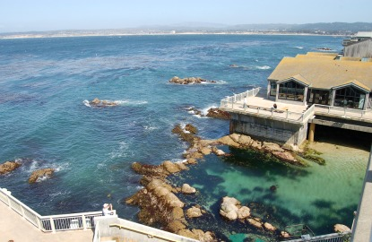 Weekend Escape Family Fun In Monterey Bay Ca Fodors
