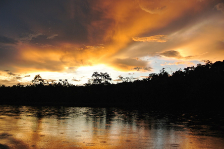 Exploring the Wild in the Ecuadorian Amazon