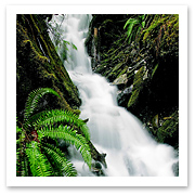 040606_waterfall2.jpg
