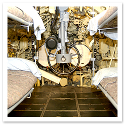 060917_MuseumofScienceandIndustryScottBrownwellF.jpg