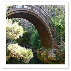 061013_STOCK_Japanese_Tea_GardensF.jpg