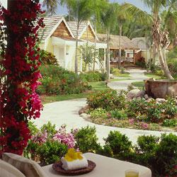 gardens_nevis.jpg