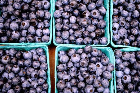 burlington-farmers-market.jpg