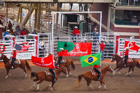 calgary-stampede-flags.jpg