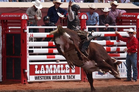 Just Back From Calgary Stampede Fodors Travel Guide