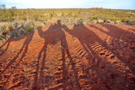 camels-australia.jpg