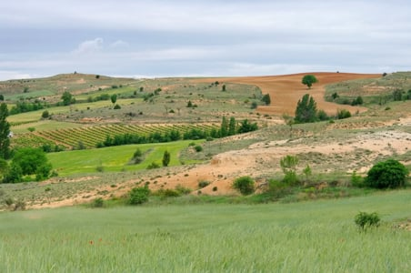 castile-field-spain-lianem.jpg