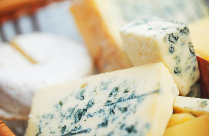 cheeses-for-plane.jpg