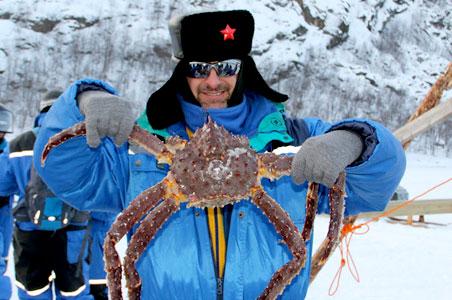 crab-hernan.jpg