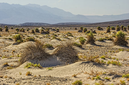 death-valley-winter.jpg