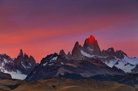 el-calafate-patagonia.jpg