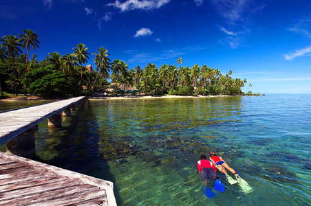 fiji-snorkeling-adventure.jpg