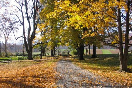 glen-gordon-manor-entrance.jpg