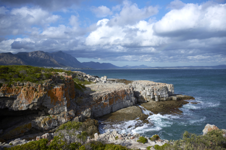 Where to Whale Watch in South Africa