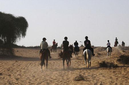 horse-riding-uae.jpg